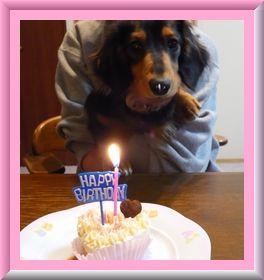 1歳のお誕生日♪