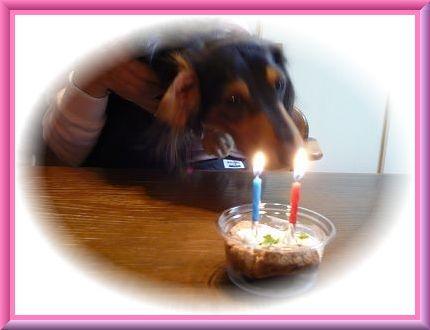 2歳のお誕生日♪