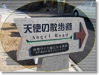 天使の散歩道♪
