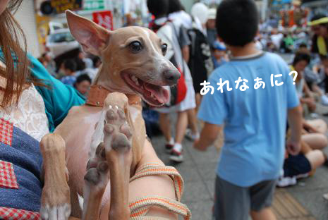 上尾夏祭り2