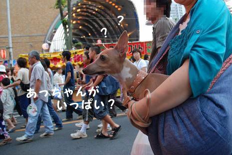 上尾夏祭り4