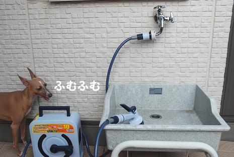 水浴び30