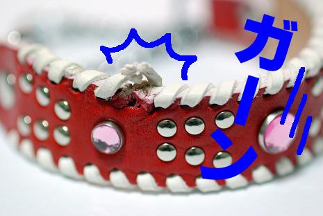 赤い首輪3