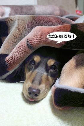 2008 03 03 ニコ手術の日 blog02のコピー