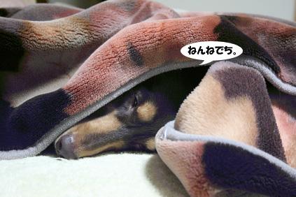 2008 03 03 ニコ手術の日 blog05のコピー