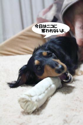 2008 03 03 ニコ手術の日 blog04のコピー