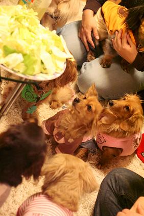 2008 02 24 焼きそばパーティー blog15
