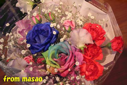 2008 03 13 アースコート blog03のコピー