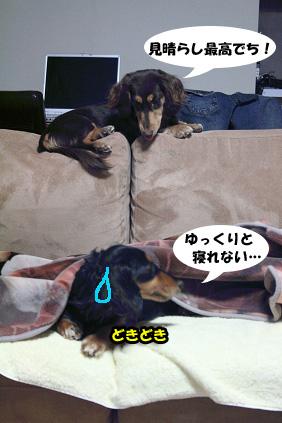 2008 03 07 アースコート blog01のコピー