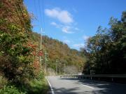 YKsamatei20081112 2