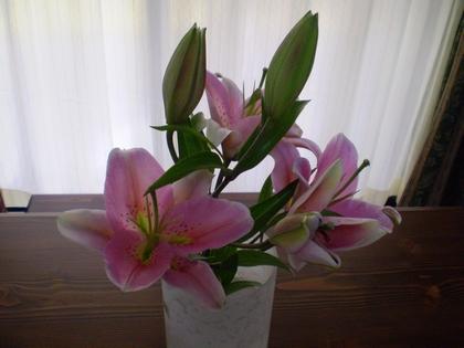 Birthday flower 2008