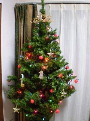 Xmas tree2008