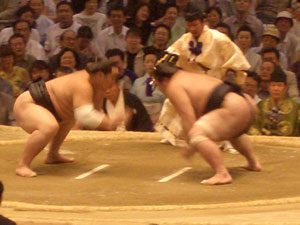 sumo_6.jpg