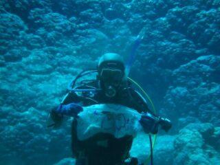 20120328300本ハニーホール海中