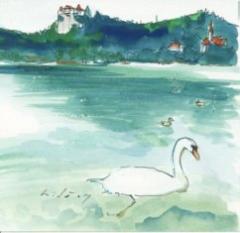 ブレッド湖の白鳥