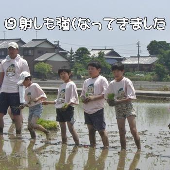 2008_05_17 188