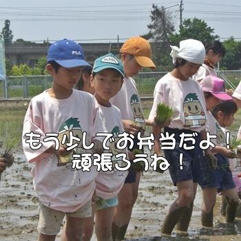 2008_05_17 169