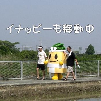 2008_05_17 046