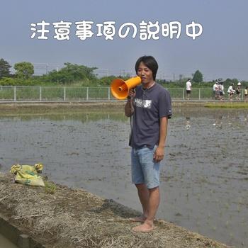 2008_05_17 056