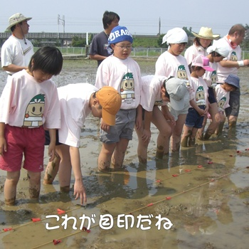 2008_05_17 059