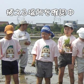 2008_05_17 071