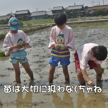 2008_05_17 075