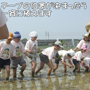 2008_05_17 079