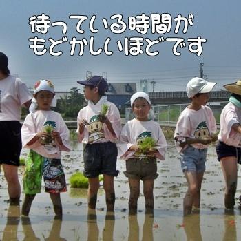 2008_05_17 088