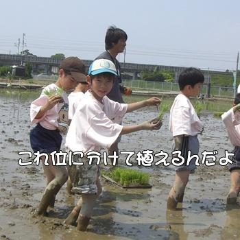 2008_05_17 122