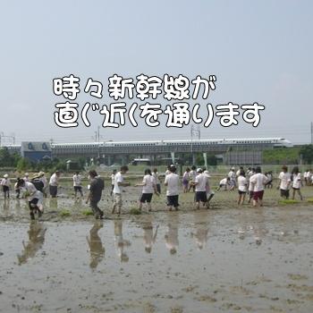 2008_05_17 114
