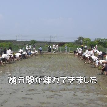 2008_05_17 104