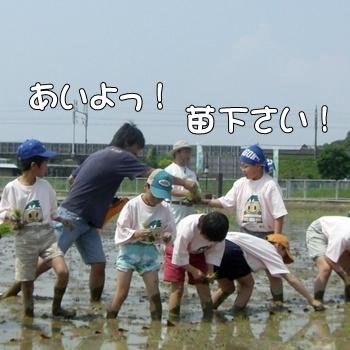 2008_05_17 103