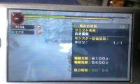 MHP2G_kirin26.jpg
