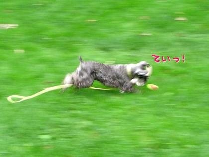 09_19_08_2.jpg