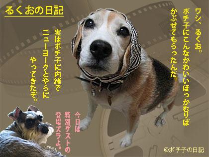 11_05_08_1.jpg