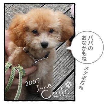 20080213055607.jpg