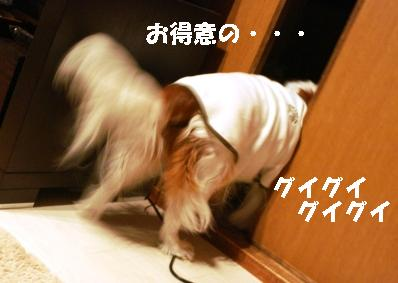 IMG_1665.jpg