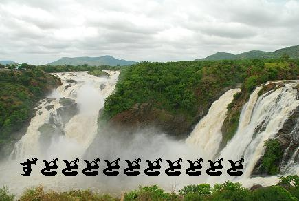 20090812_waterfall.jpg