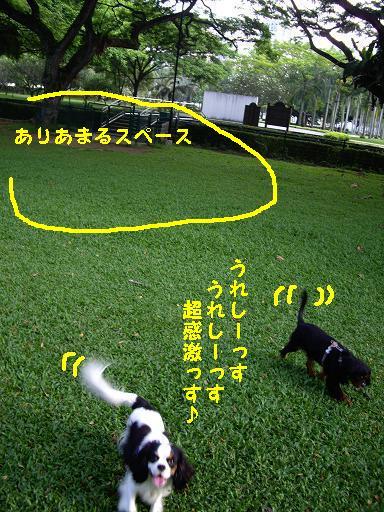 Us_IMGP2849.jpg