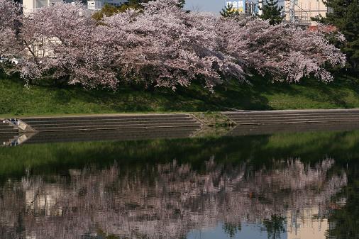 090414 春の高山祭 051