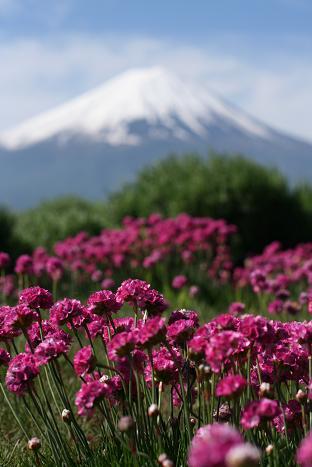 090518 富士山 131
