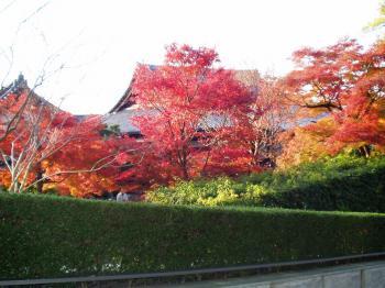 20081123京都・宇治散策 (20)