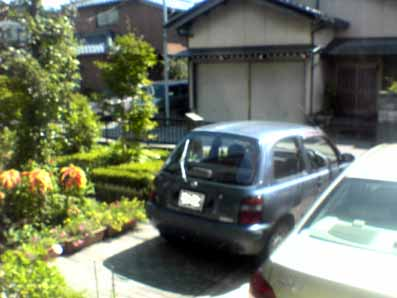 DSC04451.jpg