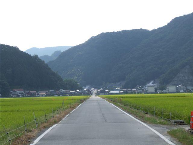 2007_0816桜江_R