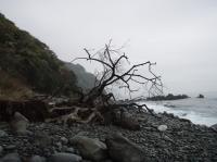 伊豆の海岸風景001