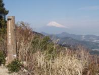 城山山頂からの富士003