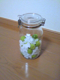 梅シロップ1