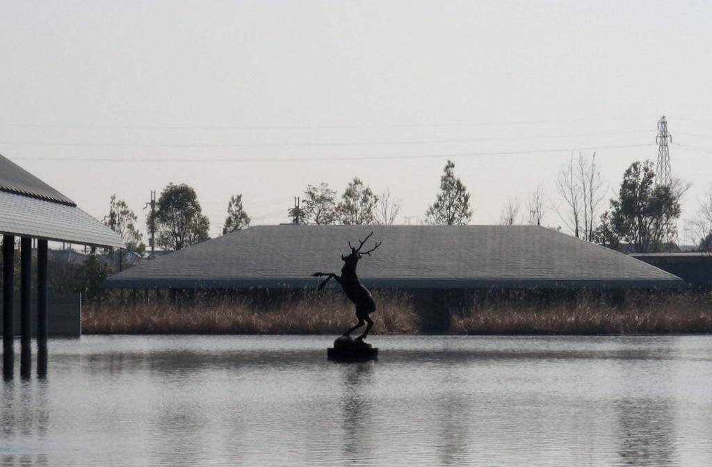 琵琶湖佐川 002