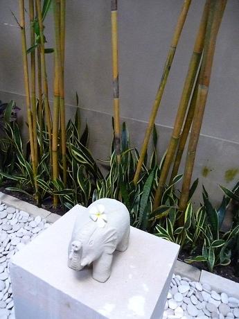竹 kirana tate