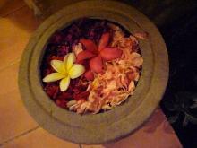 シエスタ お花